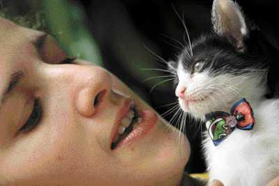 Muitos animais conquistaram um novo dono na feira da União Protetora dos Animais Carentes(Foto: EDIMAR SOARES)