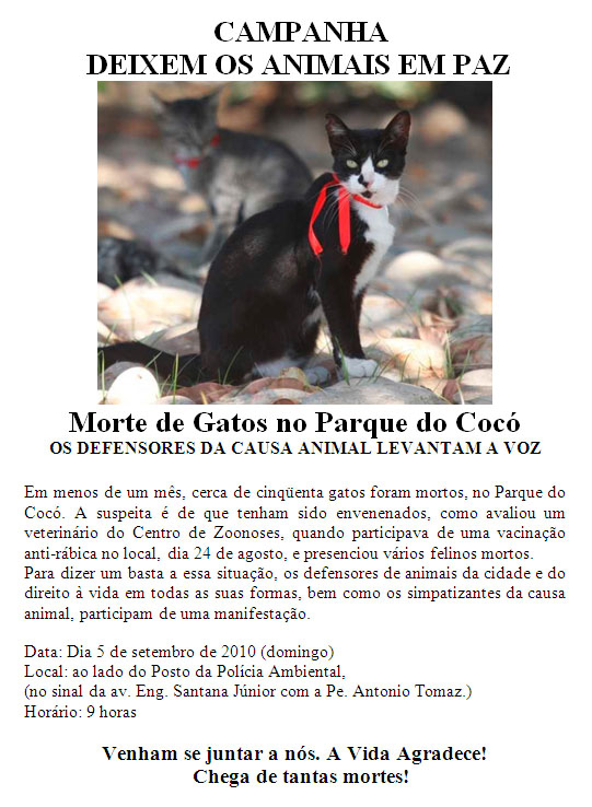 Campanha contra as mortes dos Gatos do parque do cocó