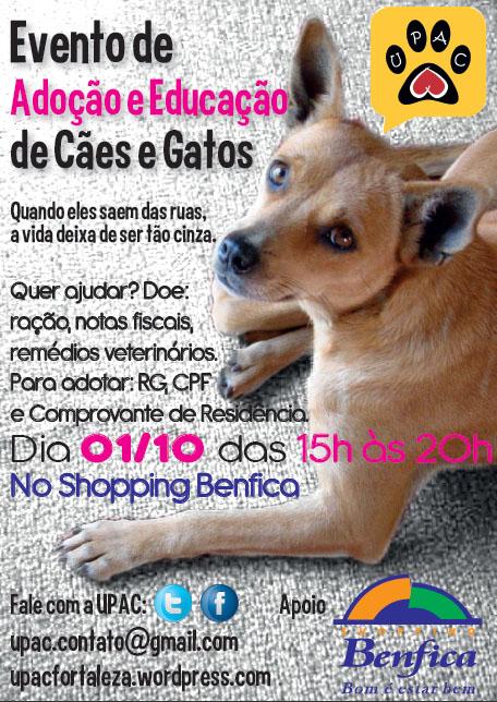 Evento de Educação e Adoção de Cães e Gatos da Upac-Participe!
