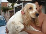 Lila, desapareceu em Junho de 2011 do bairro benfica