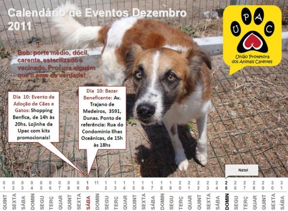 Calendário de Eventos Upac - Dez 2011