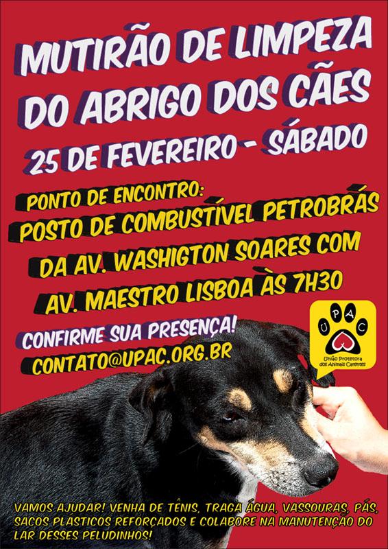 Mutirão de Limpeza no abrigo dos Cães da Upac - Fev12