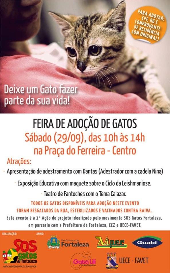 Feira de Adoção de Gatos do Grupo SOS Gatos Fortaleza - 29/9