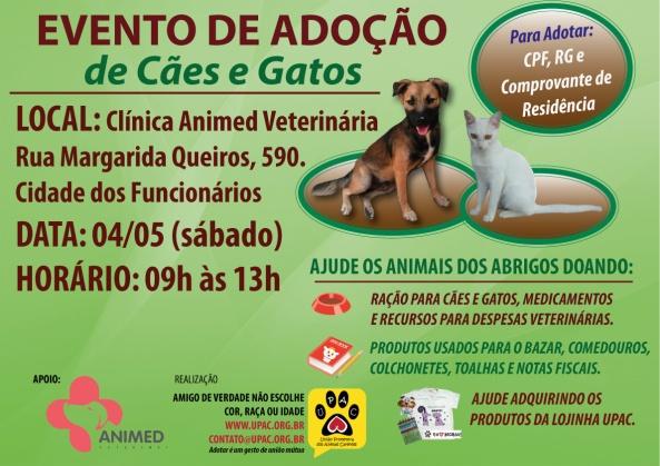 Evento de Adoção de Cães e Gatos - Mai-13