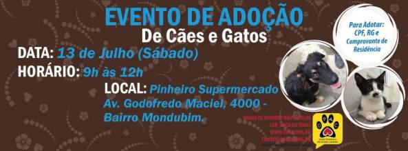 Evento de adoção de Cães e Gatos da UPAC