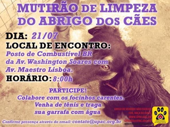 Mutirão de Limpeza no abrigo dos cães da UPAC!