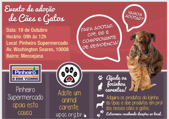 Dia 19/10 (sábado) teremos Evento de Adoção de Cães e Gatos da Upac!