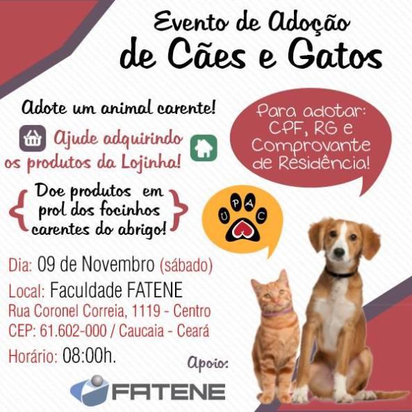 Evento de adoção de cães e gatos da UPAC!